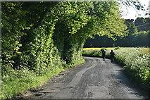 TQ6243 : Dislingbury Rd by N Chadwick