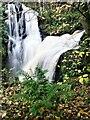 NS2154 : Fairlie Castle Waterfall - Fairlie Glen, North Ayrshire by Raibeart MacAoidh