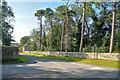 NT9932 : Doddington : Drovers Lane by Lewis Clarke