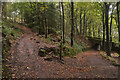 SK3056 : Part of the High Peak Trail Cromford Incline, Derbyshire by Andrew Tryon