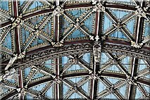 ST0207 : Cullompton, St. Andrew's Church: The magnificent nave wagon shaped roof (detail) 3 by Michael Garlick