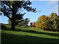 SO7595 : Autumn Folly by Gordon Griffiths