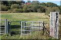 SO1103 : Cwmllwydrew LNR,  Parc Cwm Darran by M J Roscoe