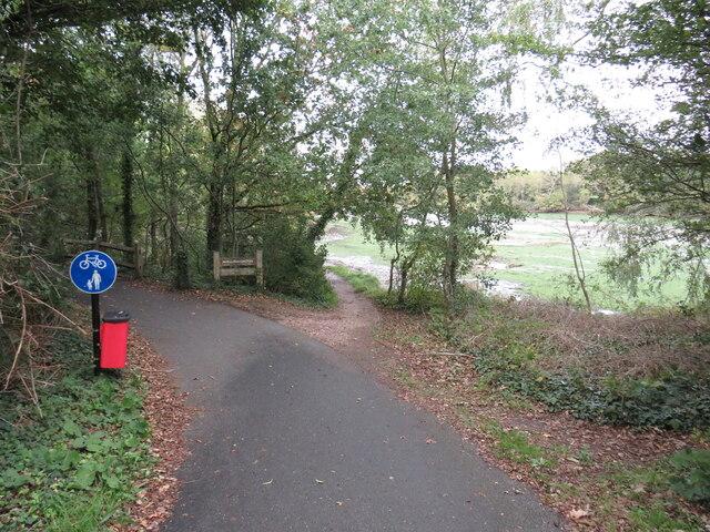 Shared path near Newport