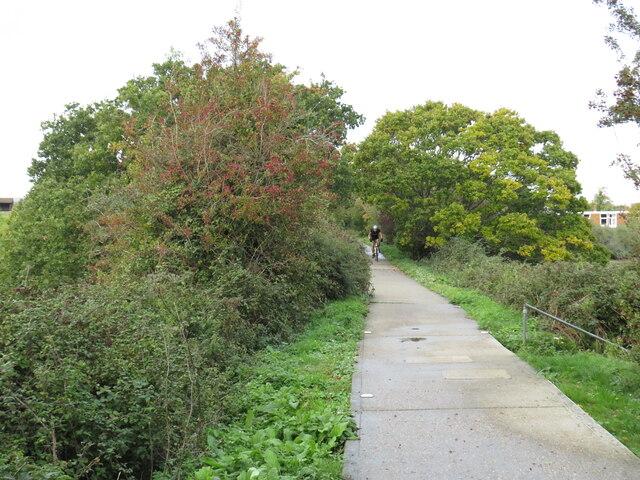 Red Squirrel Trail near Newport