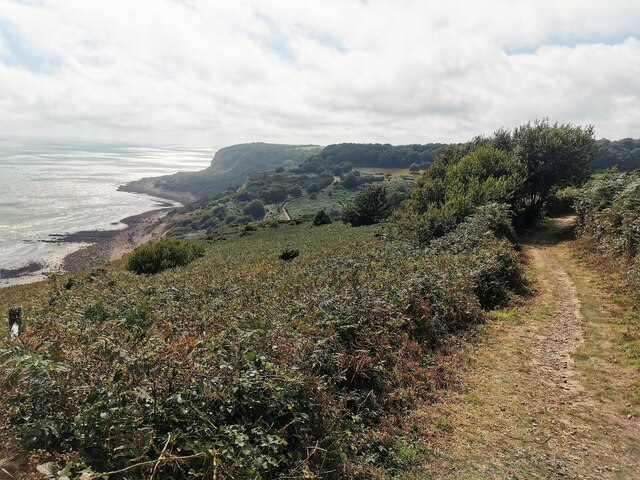 Path in Fairlight, Hastings Country Park