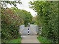 SZ5091 : Bridge on the Red Squirrel Trail near Newport by Malc McDonald
