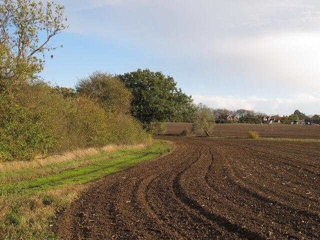 Tilled field near Codham Hall, Great Warley