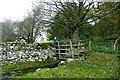 SD9690 : Footbridge merges into stile by Andy Waddington