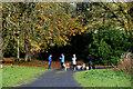 H4864 : Dog walkers, Seskinore by Kenneth  Allen