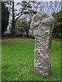 SX0767 : Old Wayside Cross by L Nott