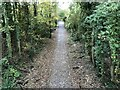 SU5174 : New path to Hermitage by Bill Nicholls