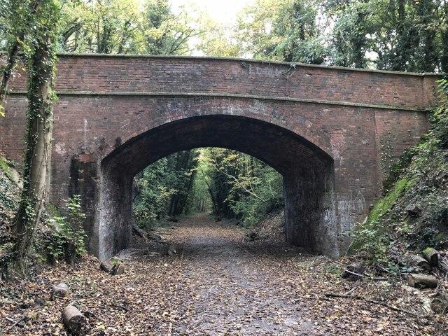 Track through the bridge