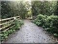 SU5276 : Start of the path by Bill Nicholls