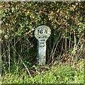 SK7329 : Grantham Canal milepost near Hose Bridge by Alan Murray-Rust
