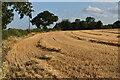 TM1449 : Harvested field bear Claydon Farm by Simon Mortimer