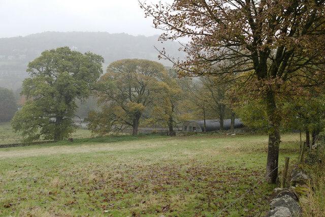 Field near Leadmill Farm