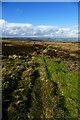 SE0595 : Bridleway northwest of Snowden Man by Andy Waddington