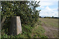 SK4537 : Os Trig Pillar by No Man's Lane, near Risley, Derbyshire by Andrew Tryon