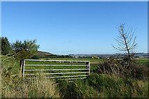 NJ4747 : Farmland near Sittinghillock by Anne Burgess