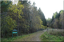 NJ5046 : Brownhill Wood by Anne Burgess