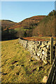 NT9616 : Wall and fence, Linhope by Derek Harper