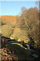 NT9517 : Stream junction, Linhope Burn by Derek Harper