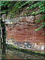 SO8685 : Sandstone exposure north of Stourton Junction in Staffordshire by Roger  Kidd