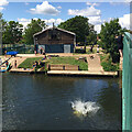 SP2965 : A big splash below Charter Bridge, Warwick by Robin Stott