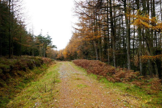 Quiet track above Cloudlam Beck