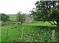 NZ0647 : Old ruin at Fell Close by Robert Graham