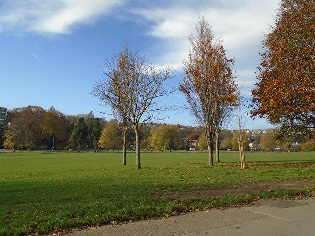 Preston Park - Nov 2020
