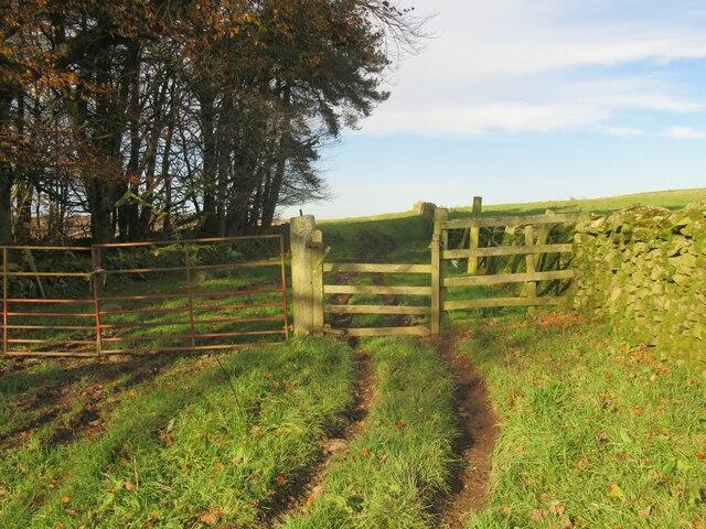 Wicket-gate on Allanshaws near Lauder
