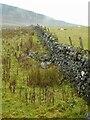 NS5276 : Dry stane dyke by Richard Sutcliffe