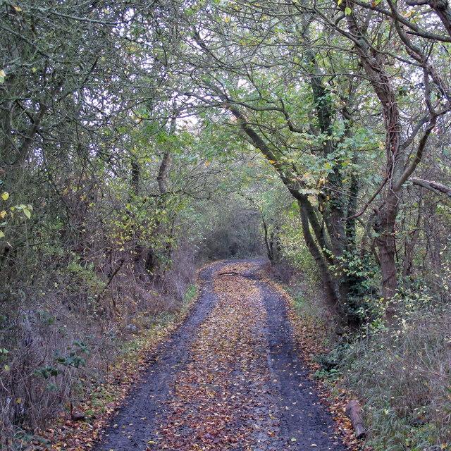 Nightingale Lane, West Horndon