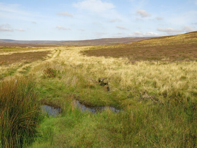 Ford on a track across moorland east of Shittlehope Edge