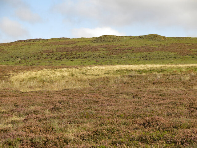 Moorland below a disused quarry north of Round Hill