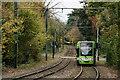 TQ3464 : Tramlink by Peter Trimming