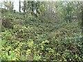 SK3523 : Gilbert's limeyard, Ticknall by Christine Johnstone