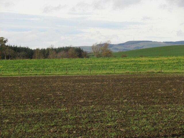 Farmland on West Newton
