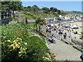 SY3391 : Lyme Regis - Langmoor Gardens by Colin Smith