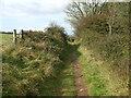 ST3657 : Part of the West Mendip Way by Neil Owen