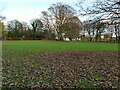 SE2039 : Open space in Micklefield Park by Stephen Craven