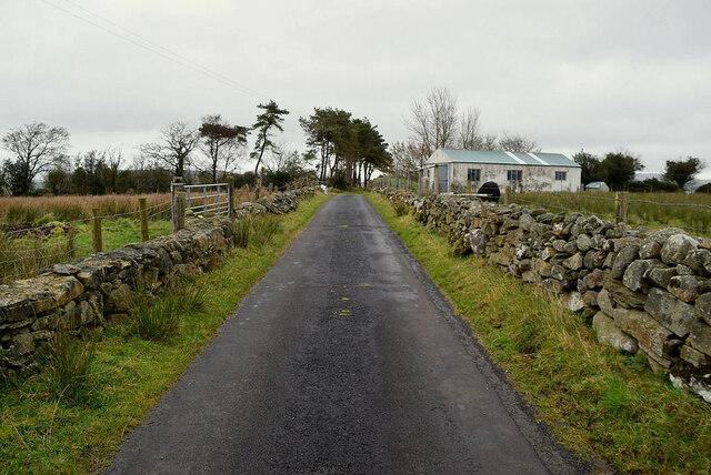Dry stone walls along Kilmore Road, Bomackatall Upper