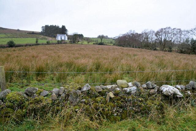 Rushy ground, Bomackatall Upper