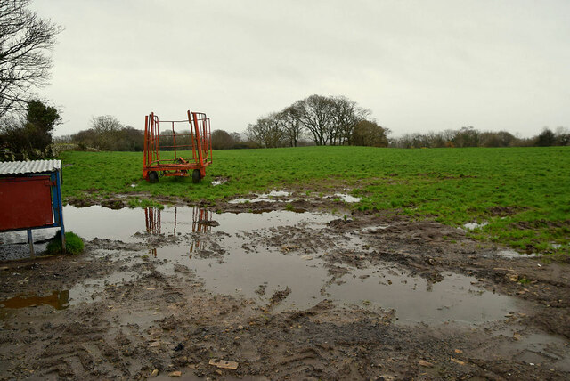 A wet field, Bomackatall Upper