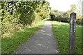 TQ5806 : Milepost, Cuckoo Trail by N Chadwick