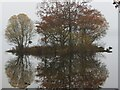 NS4091 : Small Island, Large Loch, Autumn by Mags49
