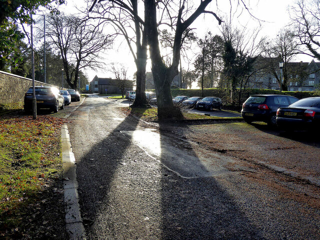 Tree shadows, T & F grounds, Omagh