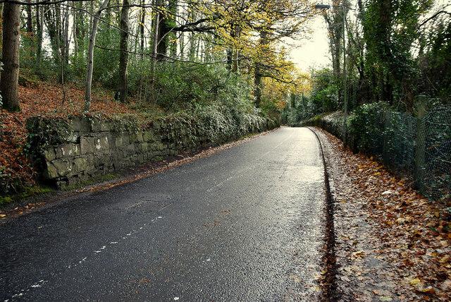 Crevenagh Road